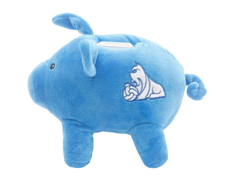 Money Box Piggy Bank