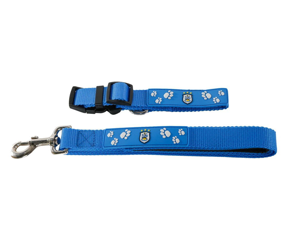 Large Dog Lead and Collar Set
